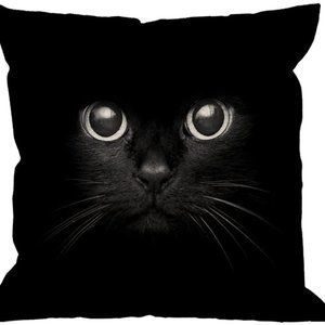 Cat Pillow Case,Cute Black Cat Face with Black Eye